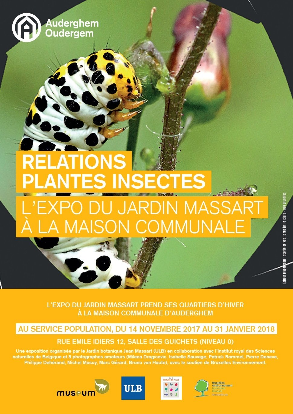 Exposition Relations Plantes Insectes